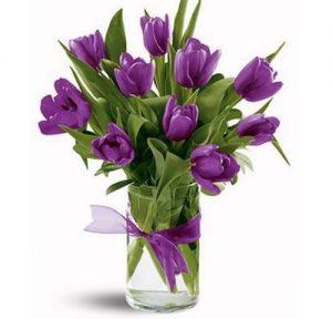 y-nghia-hoa-tulip2